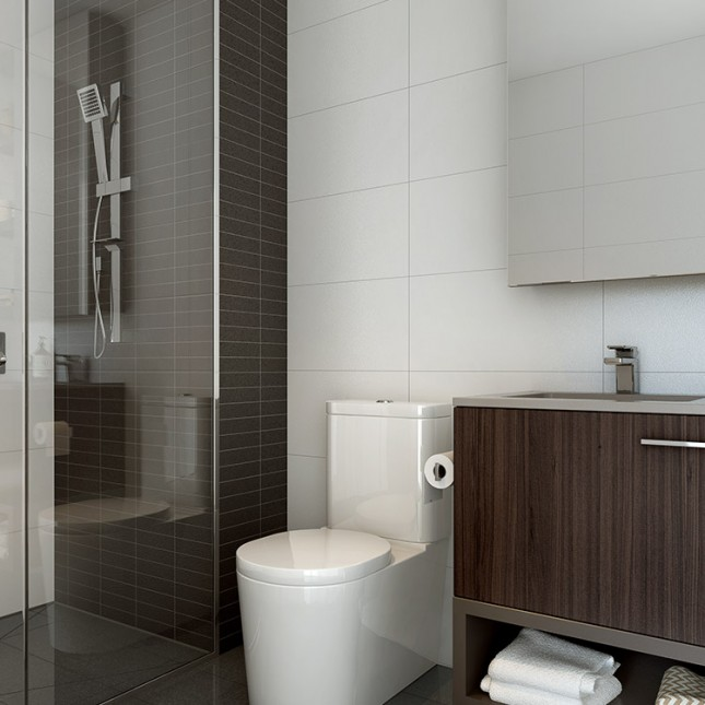 Goldfields Group, The Village dark scheme bathroom