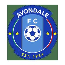 avondale-fc-crop